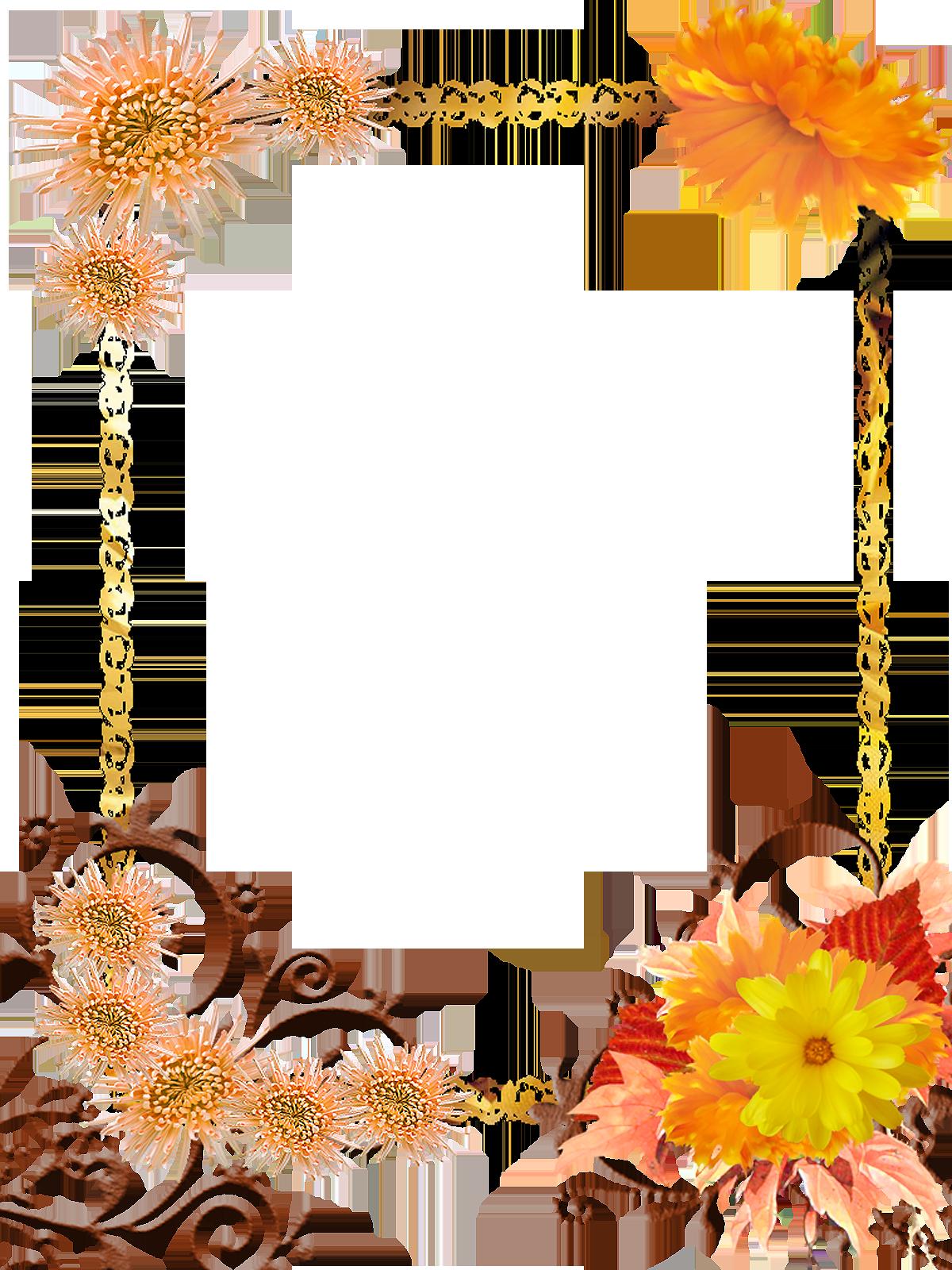marcos de flores para fotografias editables