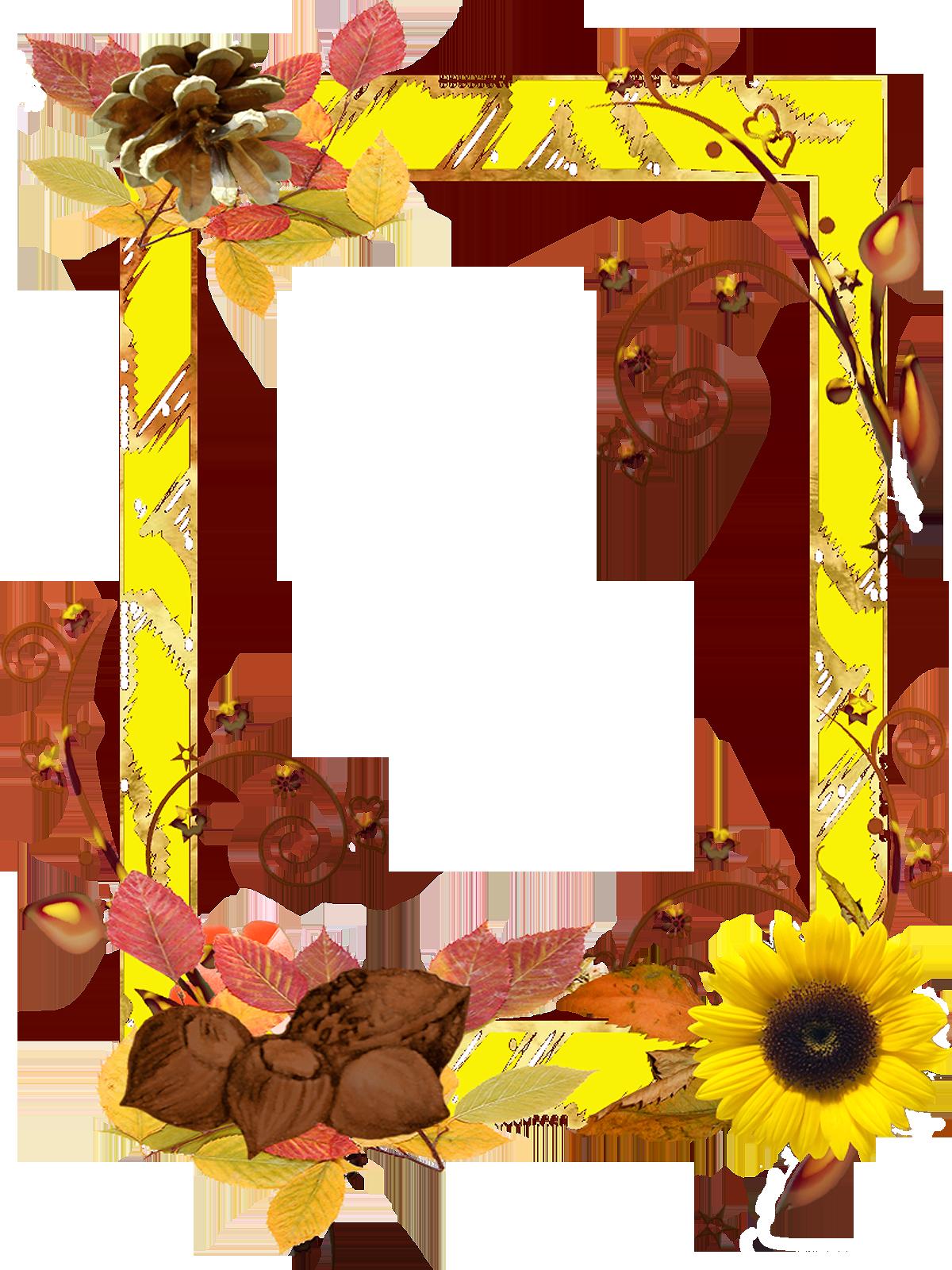 descargar marcos de flores en png