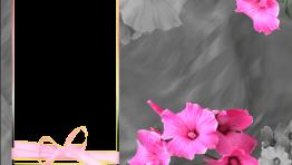 Marco Clasico de Flores Rosas