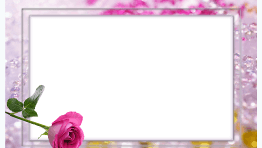 marco para foto rosas