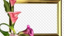 marco para fotos flores