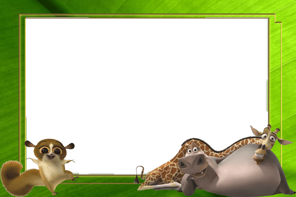 marco de foto la selva