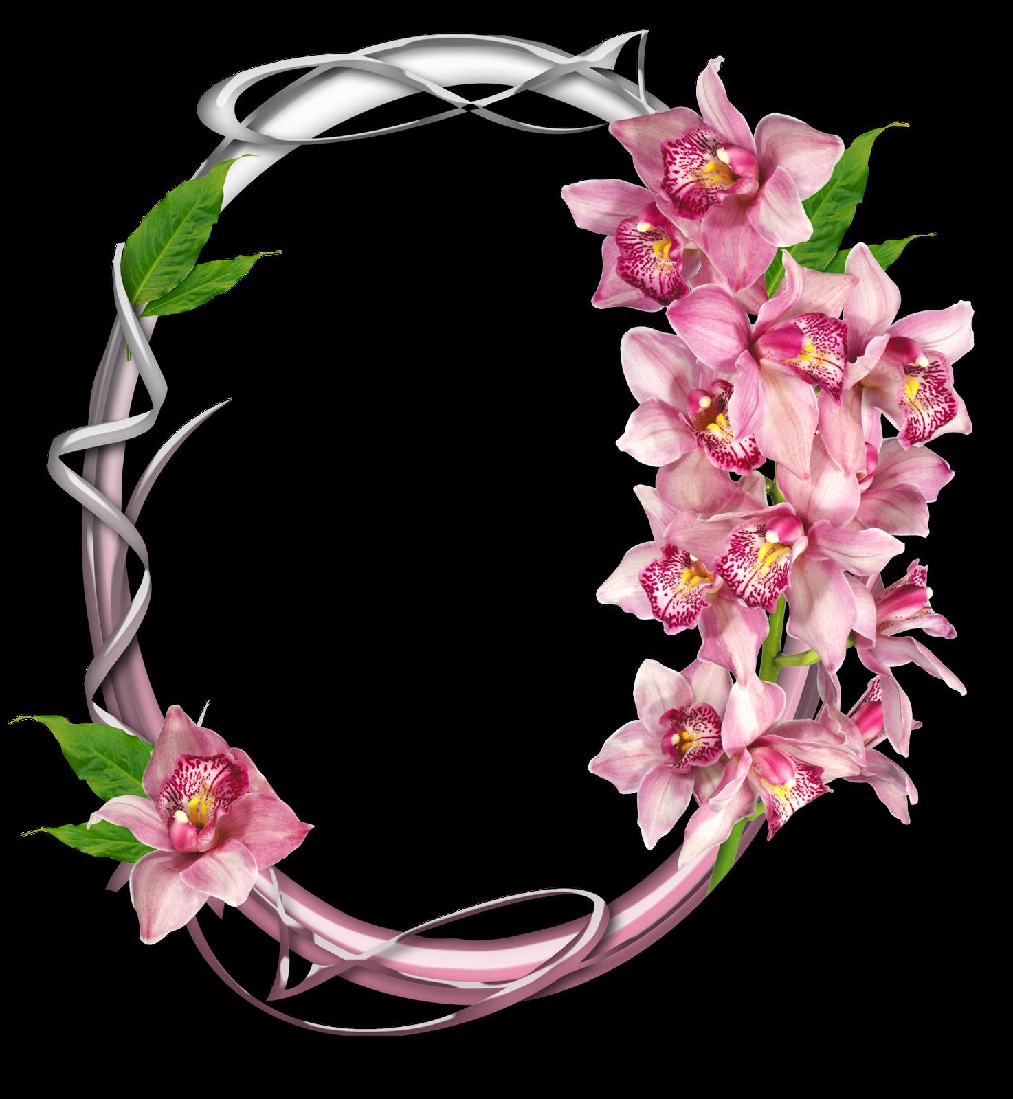 Flores | Descargar Marcos