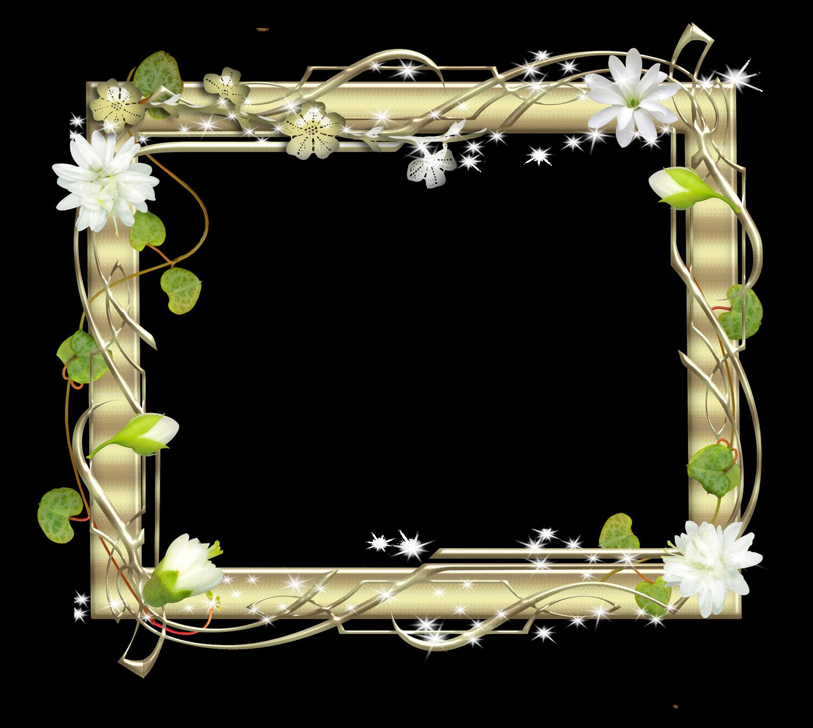 Marco Brillante con Luces y Flores | Descargar Marcos
