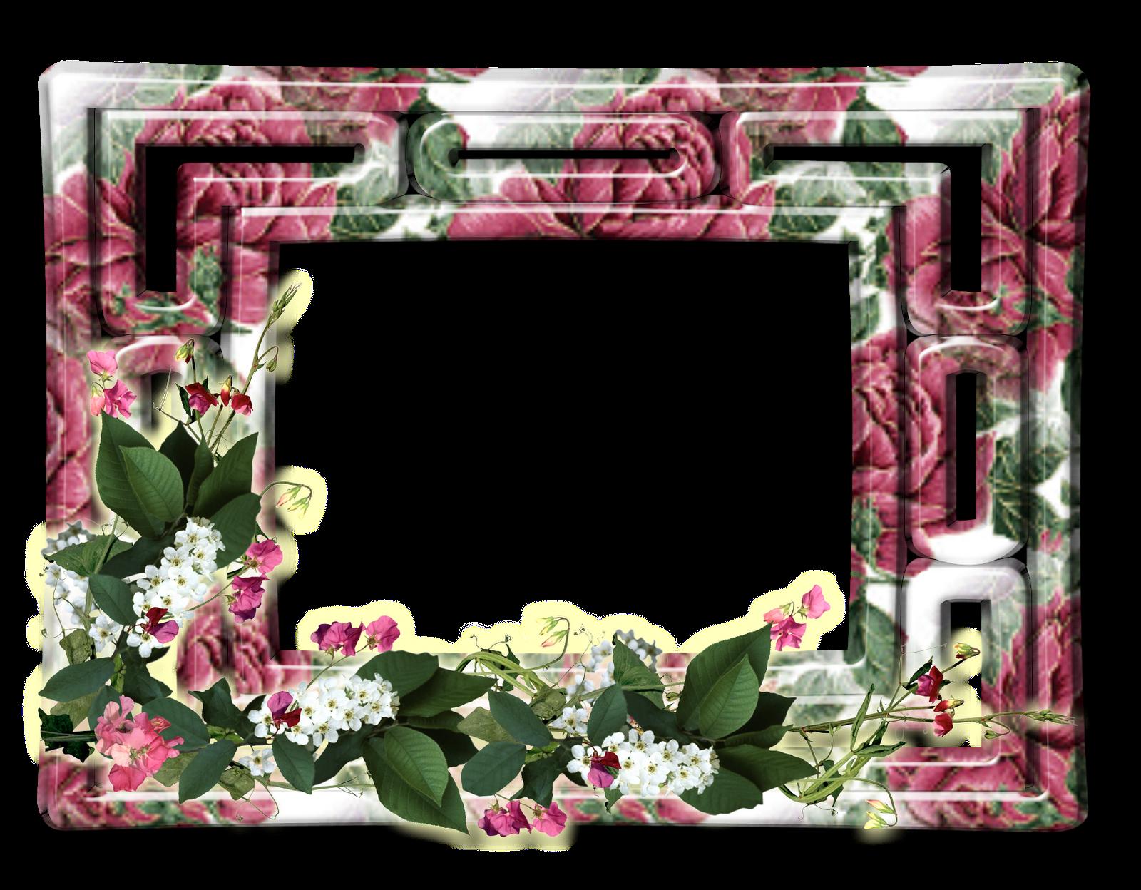 Marco de Flores 36 | Descargar Marcos